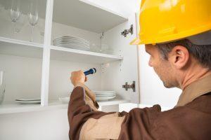 termite inspection process